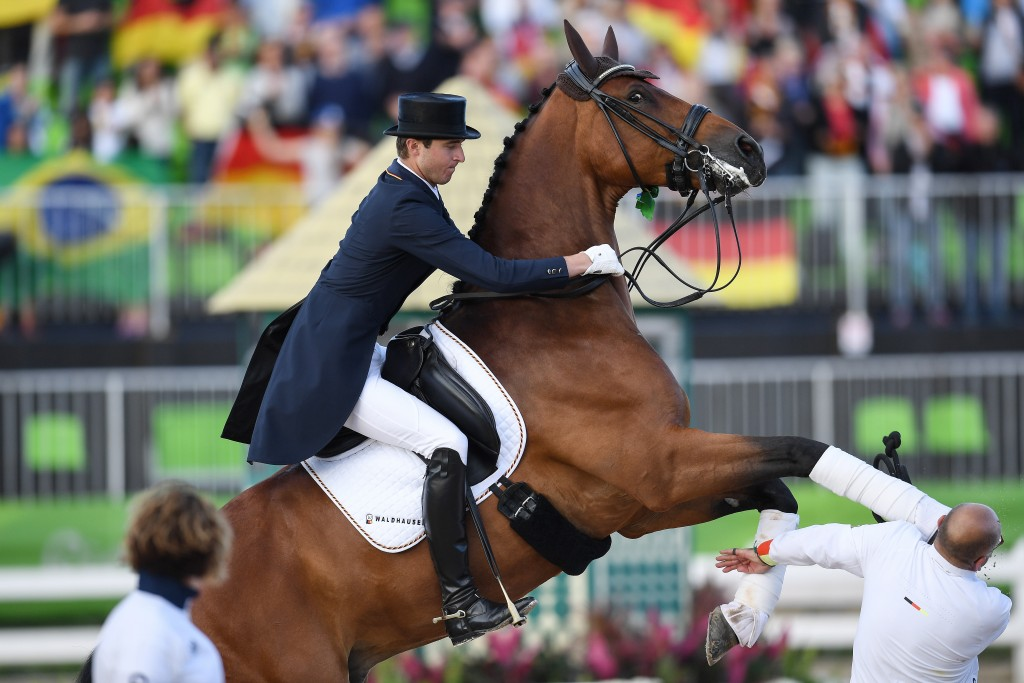 During the victory ceremony of the Dressage Team Grand Prix Special in the equestrian stadium of Deodoro the horse Cosmo of goldmedal winner Soeren Rothenberger (Germany) did shy and hit the head of his broom Robert Sanderson. The laceration of Sanderson had to be sewn in hospital