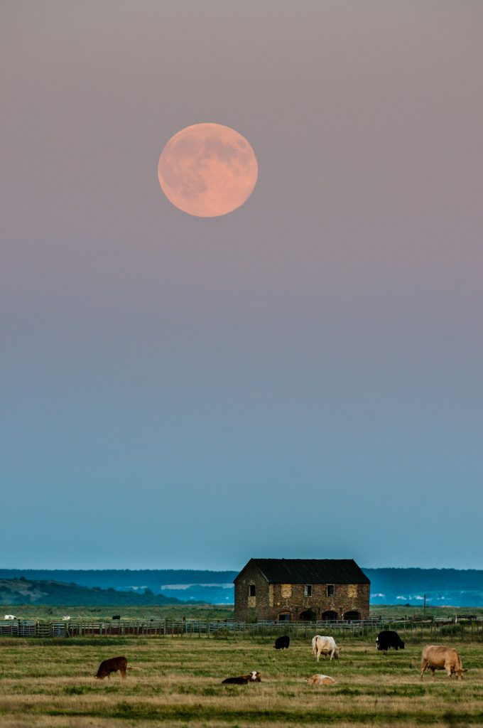 Moonrise by Robert Canis field moon in the morning